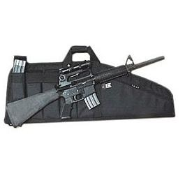 Assault Rifle Cases