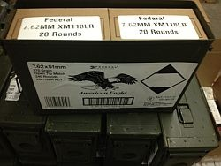 Federal Lake City Match 7.62x51mm (.308) XM118LR 175 Grain - 240rds in Can