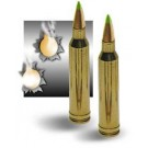 Armor Piercing .223 Ammunition - 10 Pack